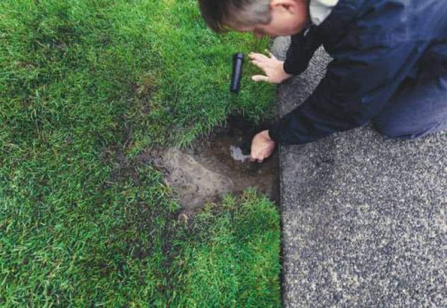 irrigation evaluation